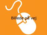 Orange mus med tekst