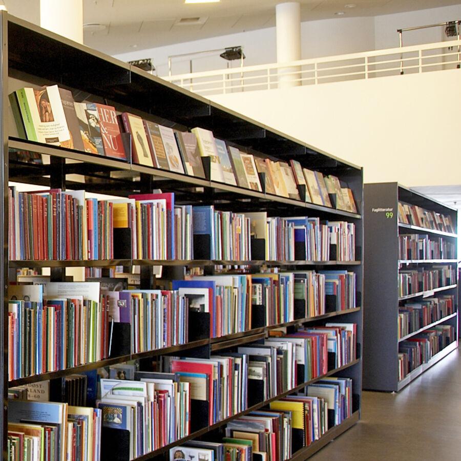 Bogreoler på biblioteket på KulturØen