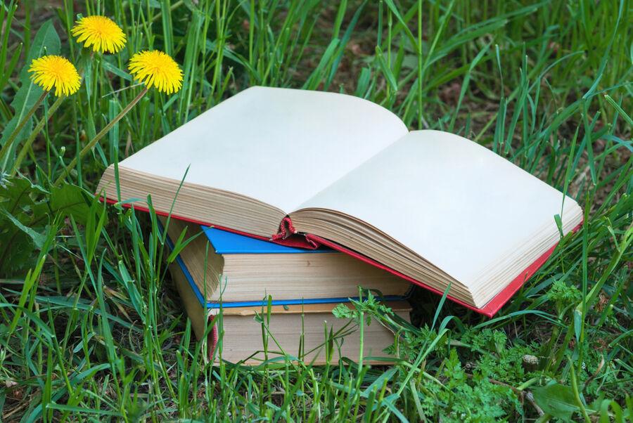 Bøger på en græsplæne